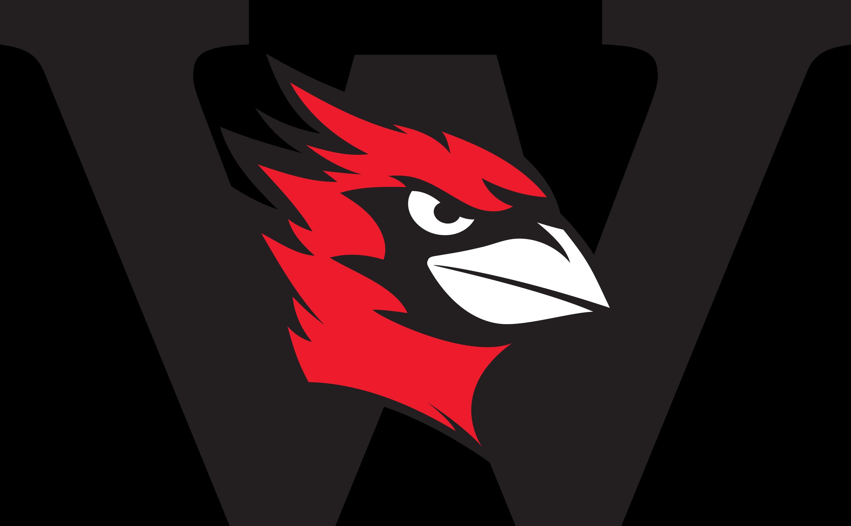 Image result for wesleyan university soccer  logo athletics